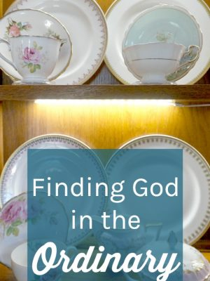 As Christians, finding God in the ordinary is such an integral step to recognizing the glory of God in all situations. Learn how to find God's blessings in the ordinary, notice God in the ordinary, and seek God in the ordinary.