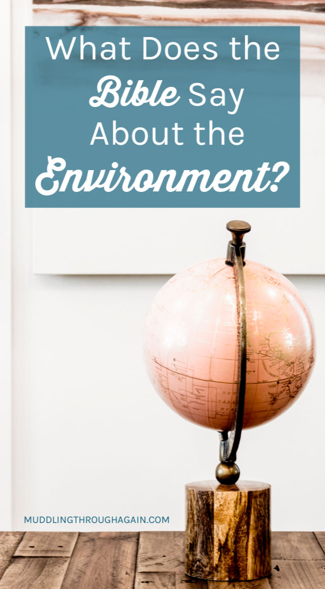 "Pink globe. Text overlay reads: ""What Does the Bible Say About the Environment?"""